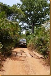 Guinea Bissau0935