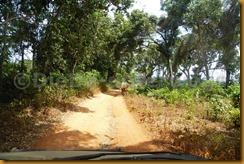 Guinea Bissau0940