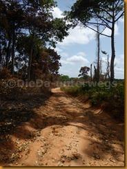 Guinea Bissau0941