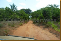 Guinea Bissau0950