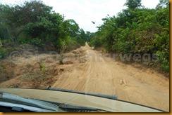 Guinea Bissau0954