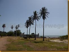 Guinea Bissau1074