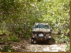 Guinea Bissau1121