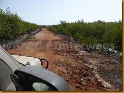 Guinea Bissau1147