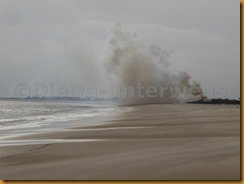 Guinea Bissau1175