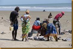 Senegal II 0121
