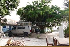 Senegal II 0258
