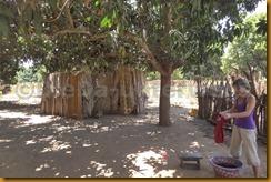 Gambia II 0011