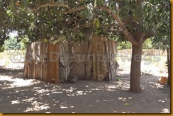 Gambia II 0012