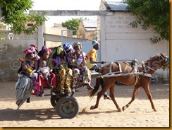 Senegal0795
