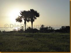 Senegambia 0105