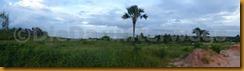 Senegambia 0120