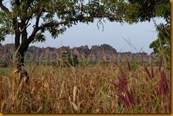Burkina Faso0069