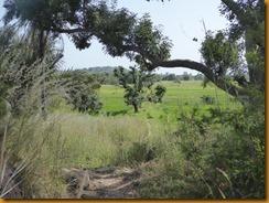 Burkina Faso0133