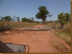 Burkina Faso0493