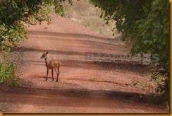 Burkina Faso0920