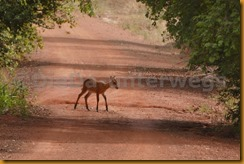 Burkina Faso0922