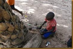 Senegambia 0306