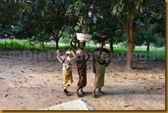 Senegambia 0546
