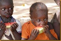 Senegambia 0557