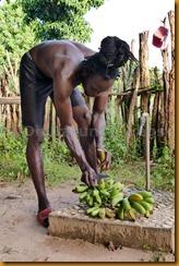 Senegambia 0564