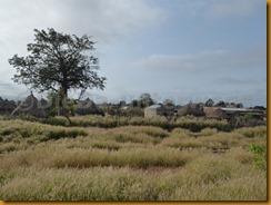 Senegambia 0617