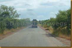 Senegambia 0629