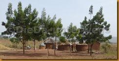 Togo0198