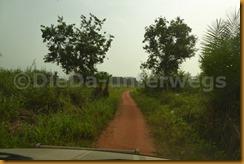 Benin0143