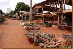 Benin1032