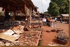 Benin1040