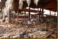Benin1044