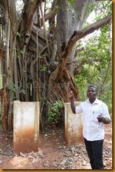 Benin1065