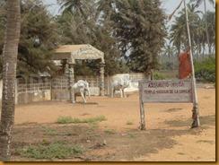 Benin0054