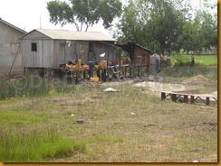 Benin0885