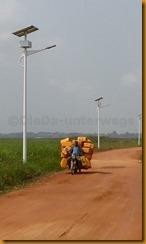 Benin0893
