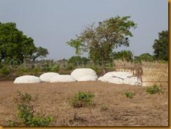Benin1170