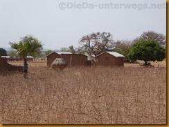 Benin2195