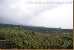 Kamerun1564