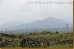 Kamerun1569