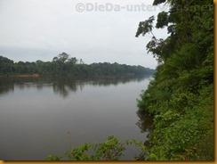 Kamerun1695