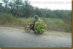 Nigeria0120