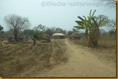 Nigeria0802