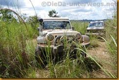 DRC0223