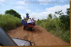 DRC0517