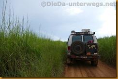 DRC0678