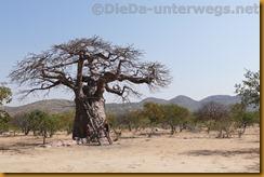 Namibia0271