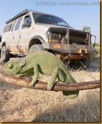 Namibia0342