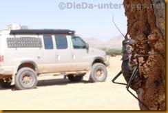 Namibia0379