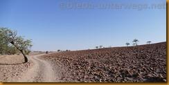 Namibia0392
